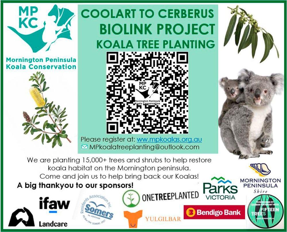 Coolart to Cerberus Biolink Project Koala